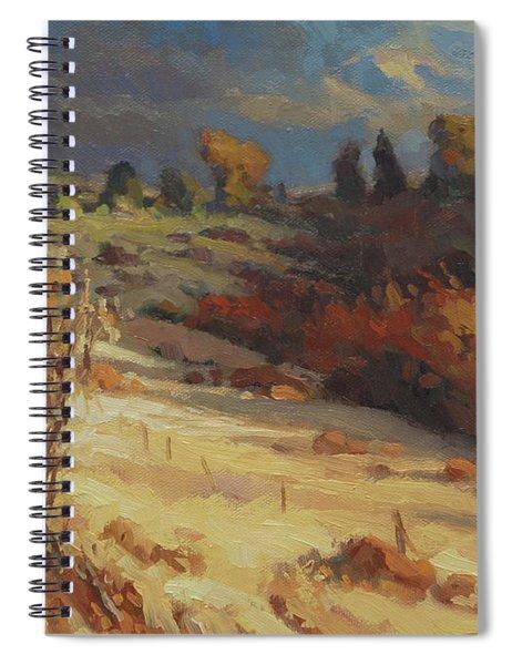 Evening Shadows Spiral Notebook