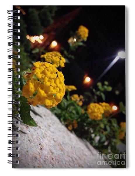 Evening Spring Spiral Notebook