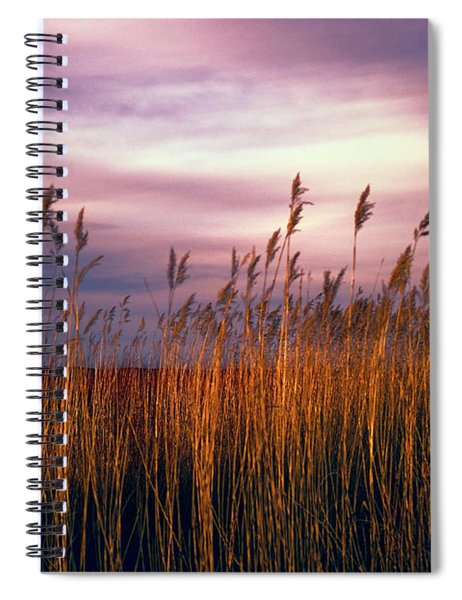 Evening's Candles Spiral Notebook