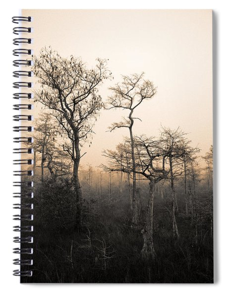 Everglades Cypress Stand Spiral Notebook
