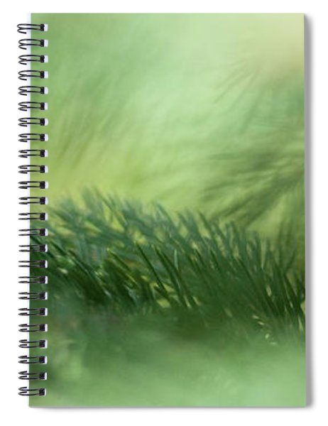 Evergreen Mist Spiral Notebook