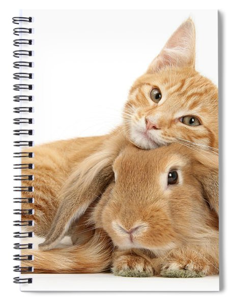 Everybody Needs A Bunny For A Pillow Spiral Notebook