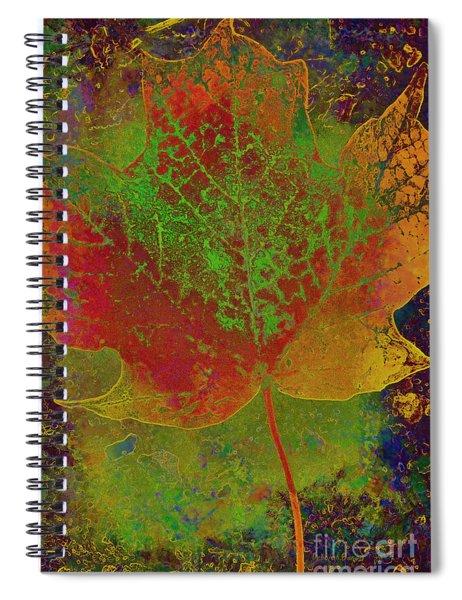 Evolution Of Life Spiral Notebook