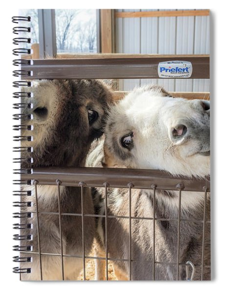 Excited To See Me Spiral Notebook