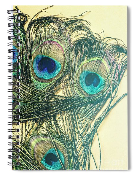Exotic Eye Of The Peacock Spiral Notebook