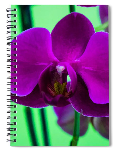 Exposed Orchid Spiral Notebook