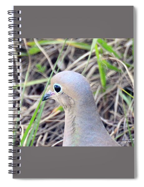 Eyeliner And All Spiral Notebook