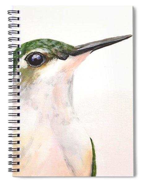 F. Ruby Throated Hummingbird Spiral Notebook