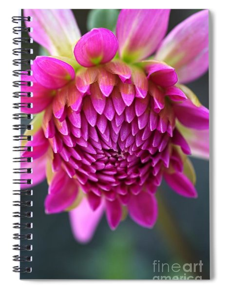 Face Of Dahlia Spiral Notebook