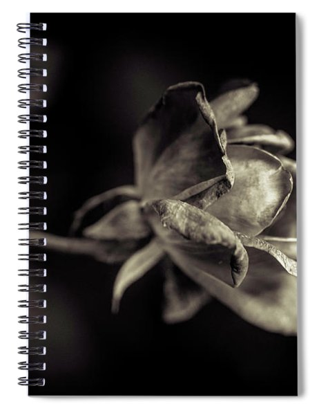 Faded Beauty Spiral Notebook