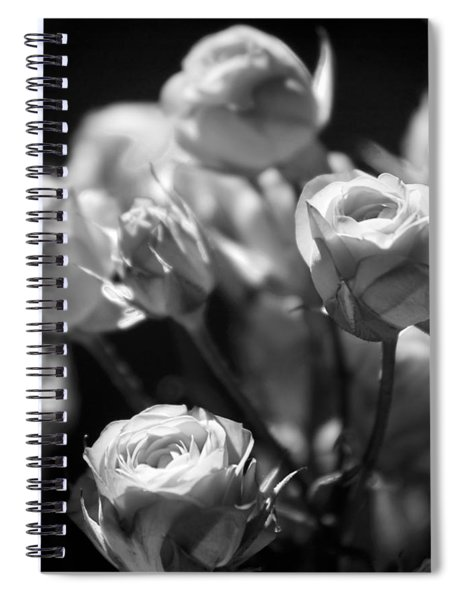 Faded Rose Spiral Notebook