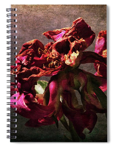 Fading Glory Spiral Notebook