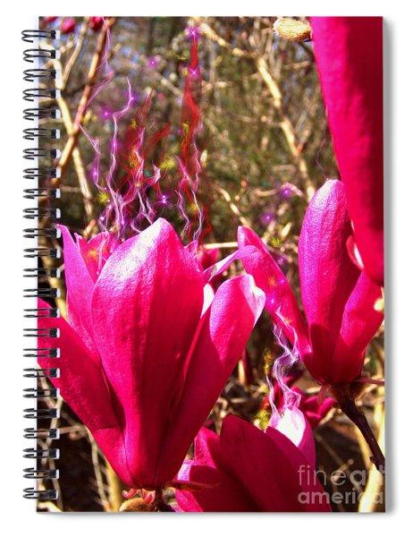 Fairy Fire Spiral Notebook