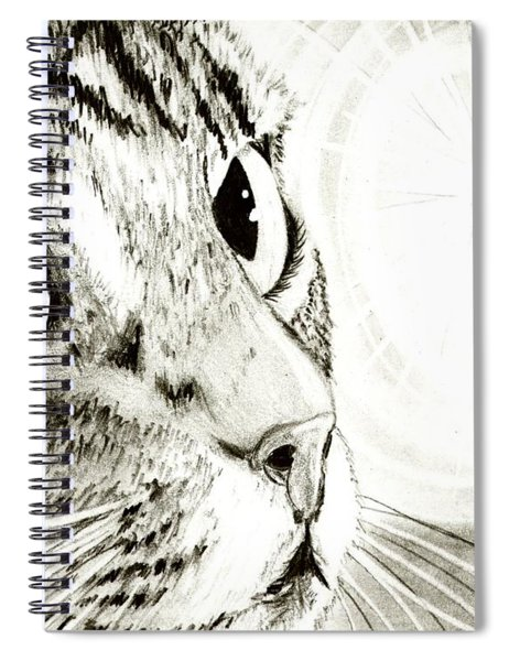 Fairy Light Tabby Cat Drawing Spiral Notebook