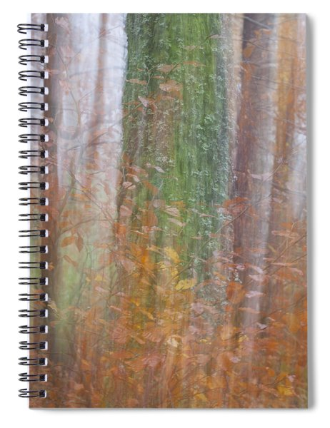 Fairy Tree Spiral Notebook