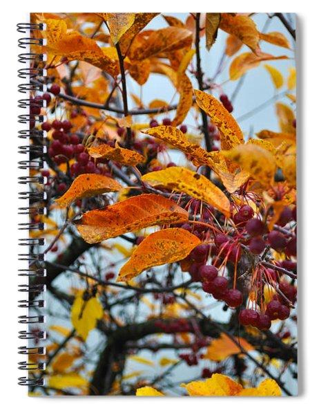 Fall Berries Spiral Notebook