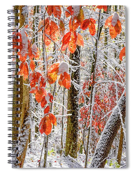 Fall Color Autumn Snow Spiral Notebook