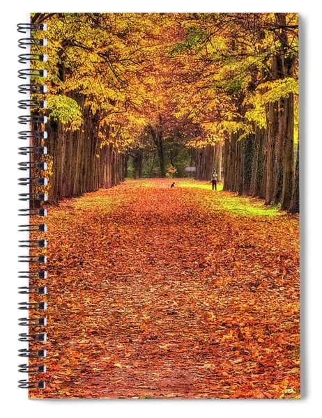 Fall Colors Avenue Spiral Notebook