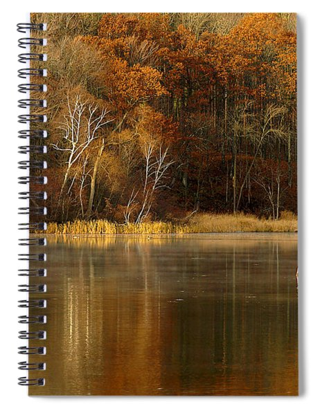 Fall Cove Spiral Notebook