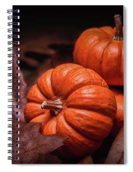 Fall Fruits Spiral Notebook