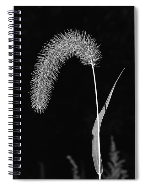Fall Grass 1 Spiral Notebook