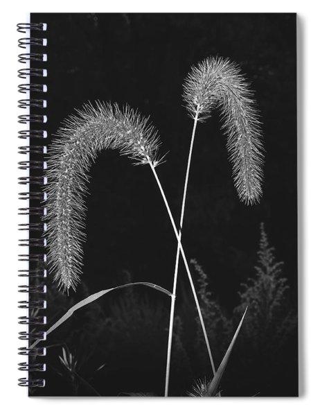 Fall Grass 2 Spiral Notebook