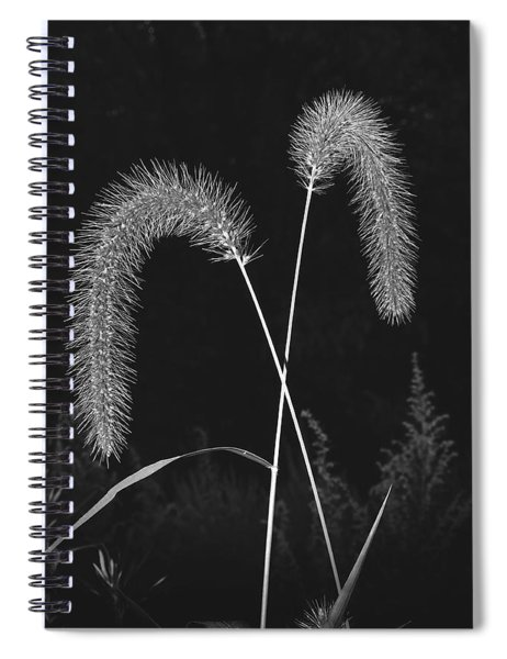 Fall Grass 2 Spiral Notebook