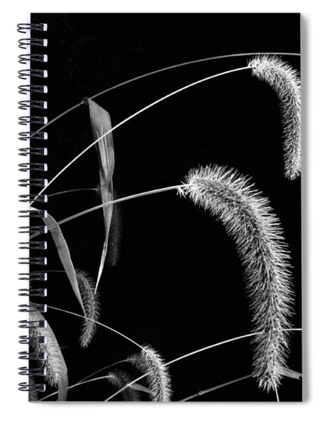 Fall Grass 3 Spiral Notebook