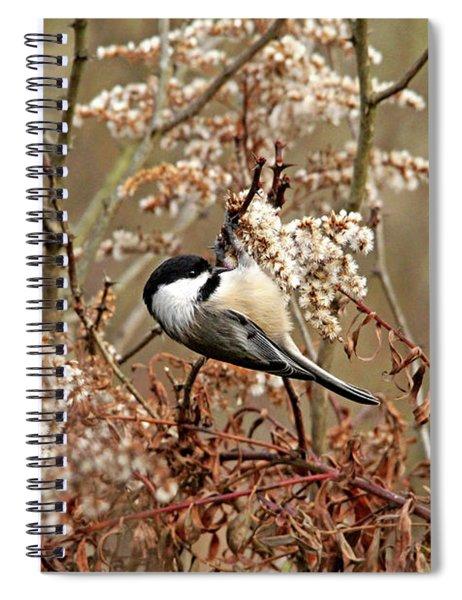 Fall Harvest Chickadee Spiral Notebook