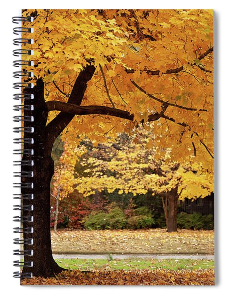 Fall In Downtown Conway Spiral Notebook