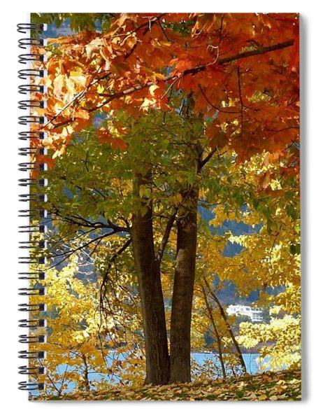 Fall In Kaloya Park 4 Spiral Notebook