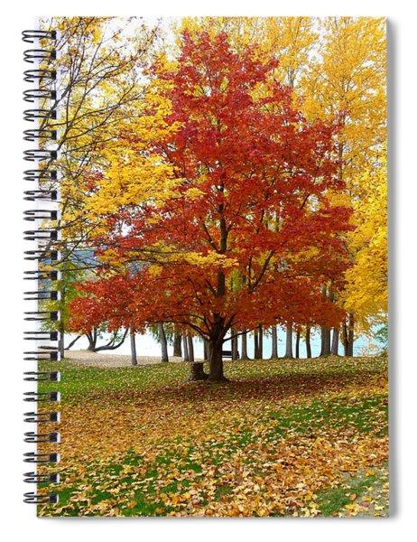 Fall In Kaloya Park 5 Spiral Notebook