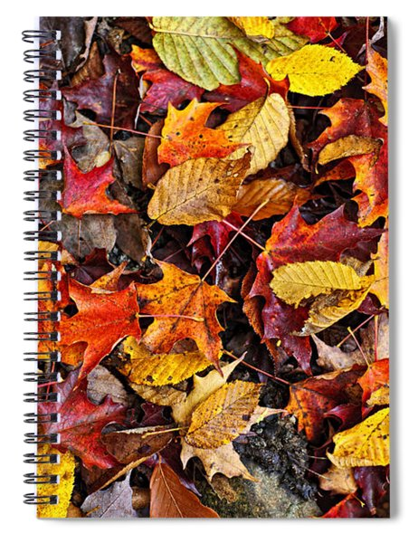 Fall Leaves On Forest Floor Spiral Notebook