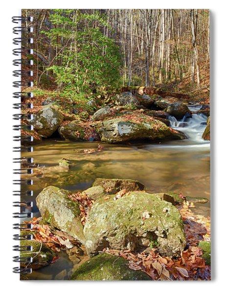 Fall Mountain Stream Spiral Notebook