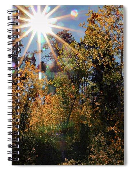 Fall Mt. Lemmon 2017 Spiral Notebook