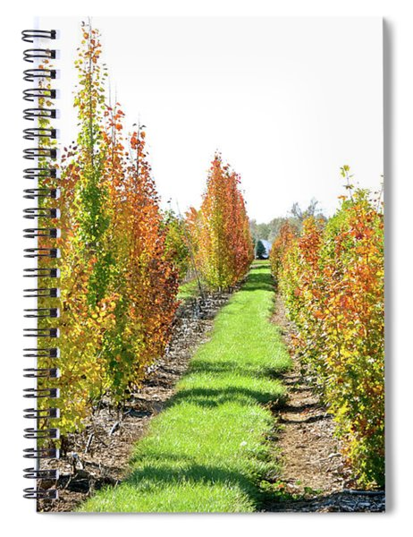 Fall On The Tree Farm Spiral Notebook