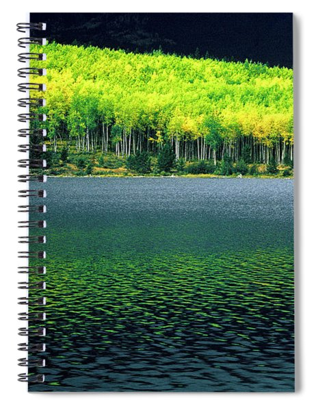 Fall Out Spiral Notebook