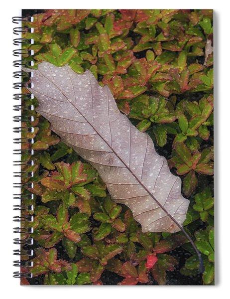 Fallen Among You Too Spiral Notebook