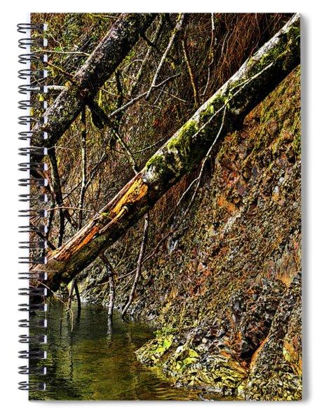 Fallen Friends 2 Spiral Notebook