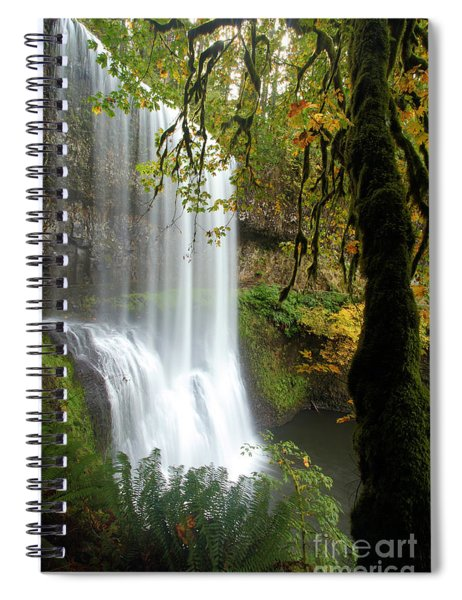 Falls Though The Trees Spiral Notebook