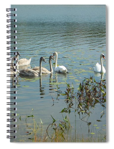 Family Of Swans Spiral Notebook