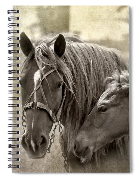 Family Ties Spiral Notebook