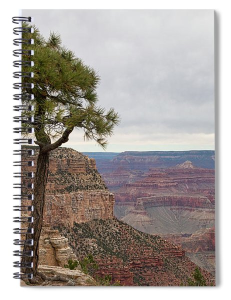 Fearless Tree Spiral Notebook