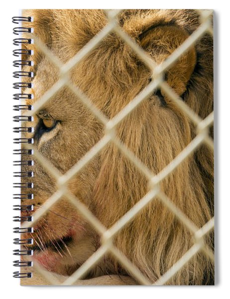 Feast For A King Spiral Notebook