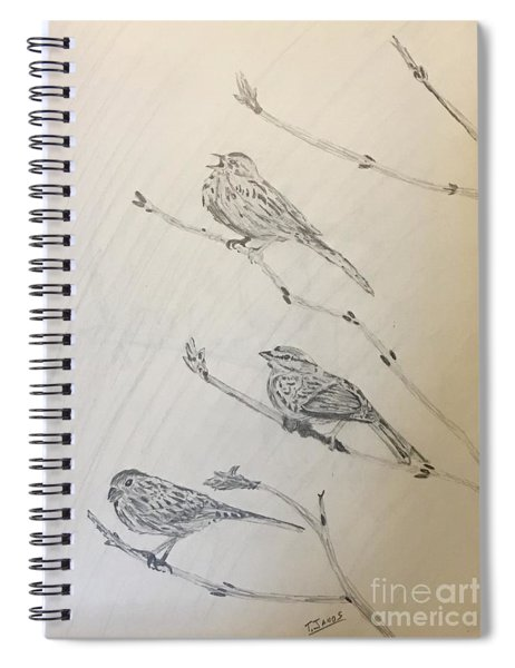 Feathers Friends Spiral Notebook