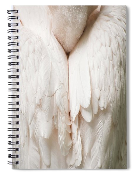 Feathers Spiral Notebook