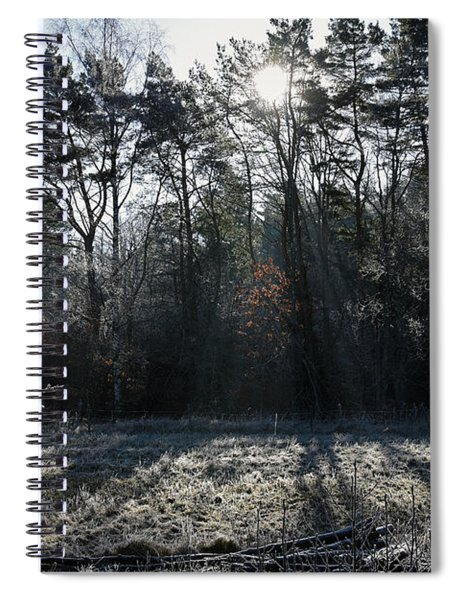 February Morning Spiral Notebook