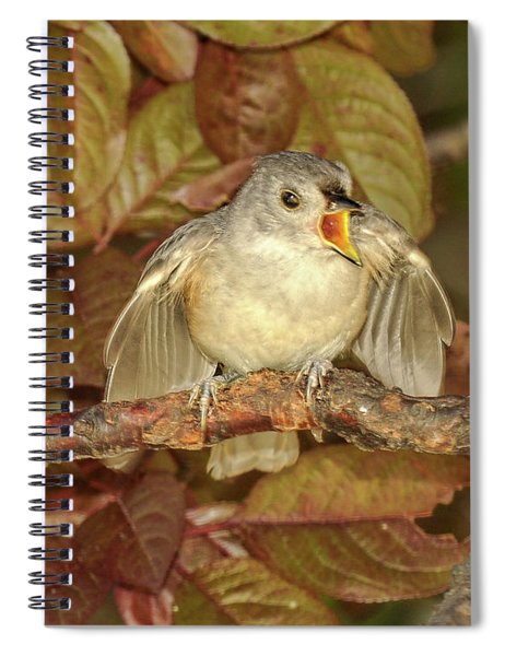 Feed Me Spiral Notebook