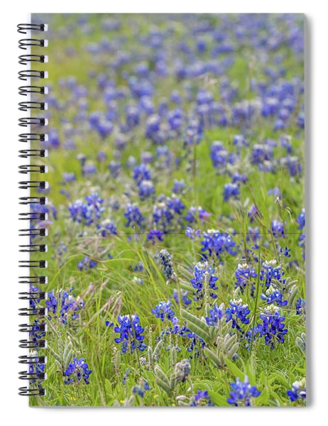 Field Of Blue Bonnet Flowers Spiral Notebook