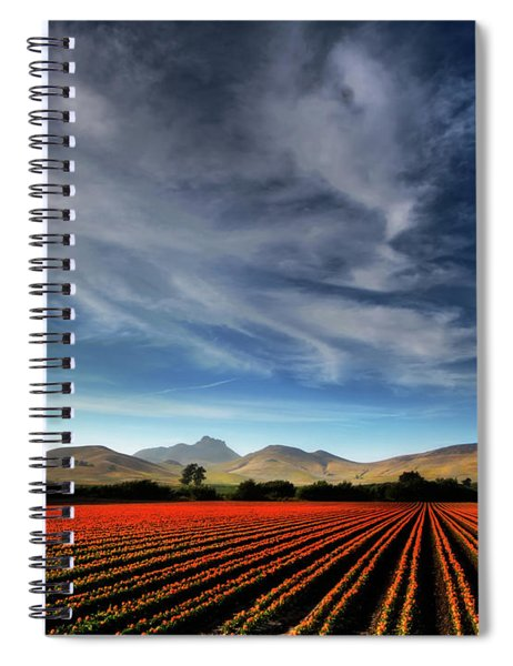 Field Of Color Spiral Notebook